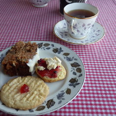 Afternoon Tea at Bluff Cove