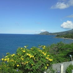St.Kitts-a magical island