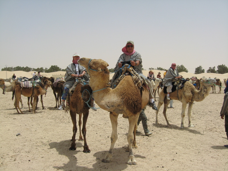 Camel ride in the Sierra Desert, Tunisia. Never thought I would have loved this. - Prinsendam