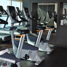 Gym on Royal Princess