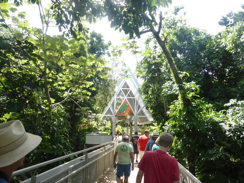 Bridge Over Tree Tops - Visitor Center - Carnival Dream