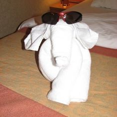 One of our many towel friends!