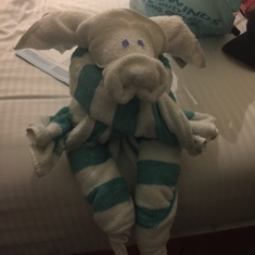 Towel animals!