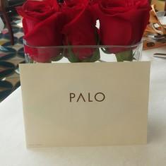 Palo on Disney Magic