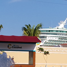 Navigator towering over treeline in Cozumel