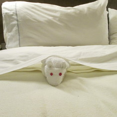 Towel mouse