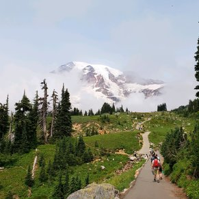Hiking in Mount Rainer National Park