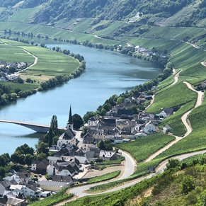The Moselle River south of Koblenz