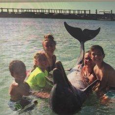 Dolphin Excursion