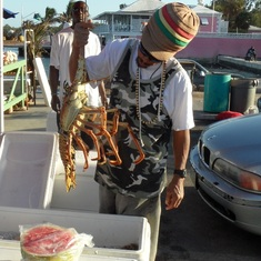 Nassau, Bahamas - The Lobster of Nassau