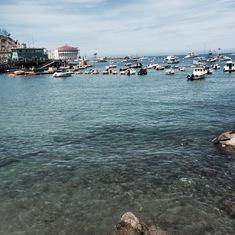 Catalina Island, California - Catalina