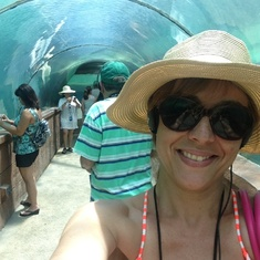 Atlantis shark tunnel