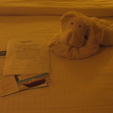 One of Norwegian's infamous towel animals