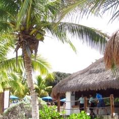 Nachi Cocom beach club in Cozumel