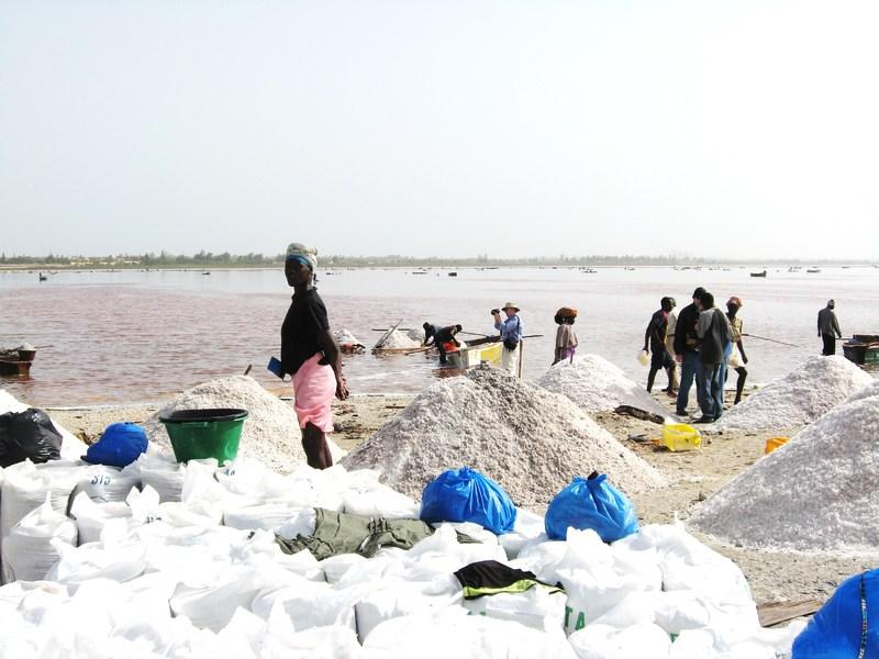 Senegal, The Pink Lake--Harvesting salt commerically