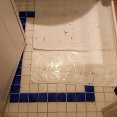 Disney Magic Cabin 2502 bathroom