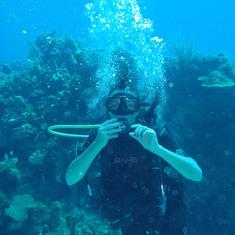 Roatan's Reef