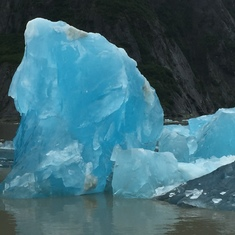 Cruise Tracy Arm Fjord, Alaska - Iceberg