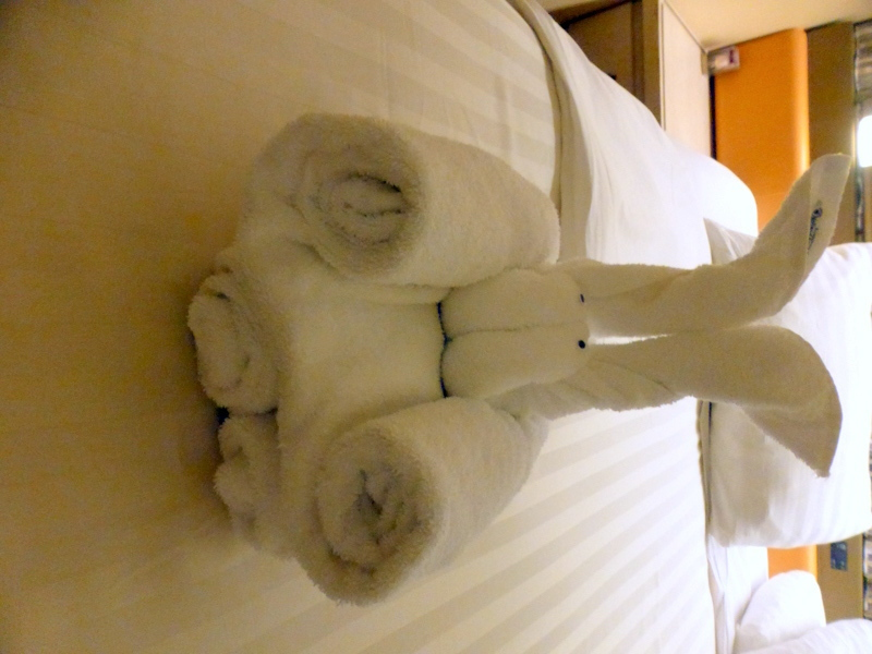 Towel animal - Amsterdam