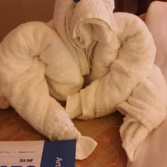 """One of our many towel """"friends"""" our steward left for us!"""