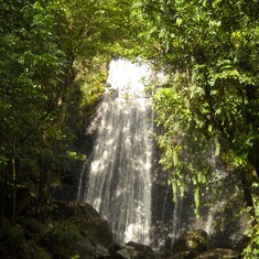 A waterfall in El Yunque