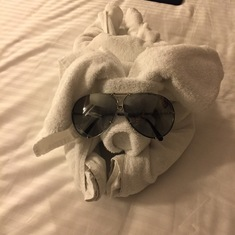 Our towel animal