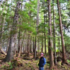 Icy Strait Point (Hoonah), Alaska - Hoonah/Icy Straight Point - take a few minutes to walk around the forest!