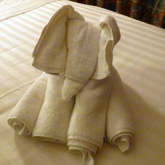Basseterre, St. Kitts - Towel elephant