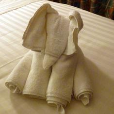 Basseterre, St. Kitts - Towel elephant
