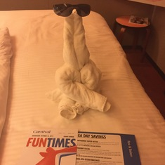 Love the towel animals!