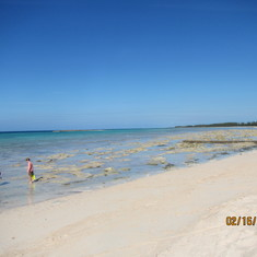 Paradise Cove - Freeport, Bahamas