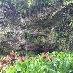 Fern Grotto in Kauai