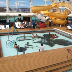 Family pool and AquaDuck