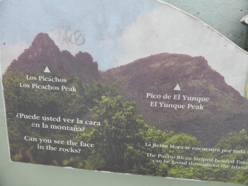 Pico de El Yunque - El Yunque Park - Carnival Liberty