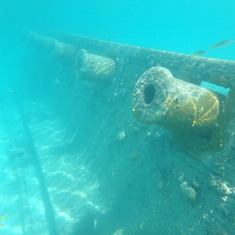 Coco Cay Snorkeling