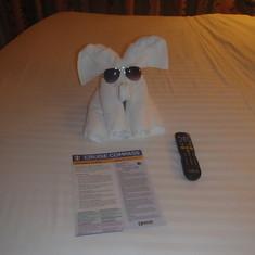 Towel Buddy
