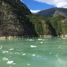 Cruise Tracy Arm Fjord, Alaska - Ice bergs at Tracy Arm Fjord