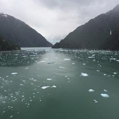 Cruise Sawyer Glacier
