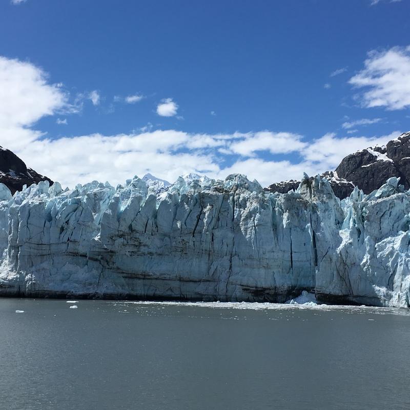 Glacier Bay - Zaandam
