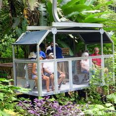 Rain Forest Puerto Limon, Costa Rica