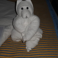 Different towel figures daily given by the housekkeeping staff