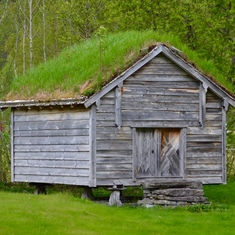 Traditional Norse roof