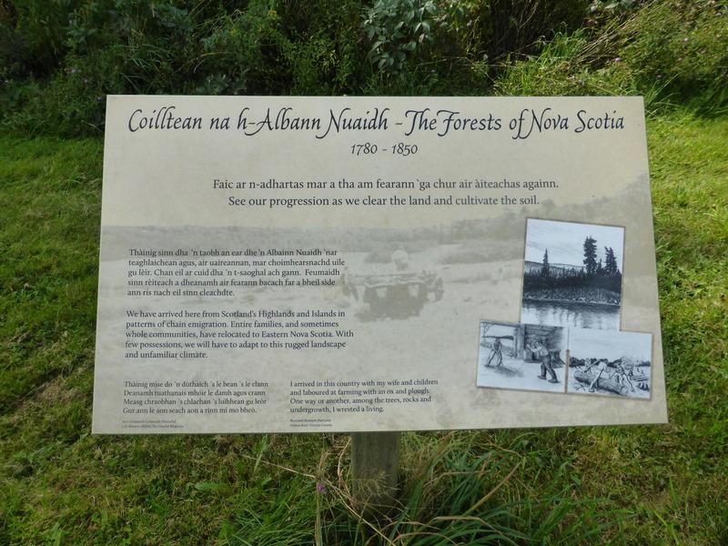 Forest of Nova Scotia - Celebrity Summit