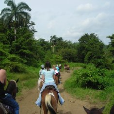 Horseback riding through the rain forest