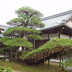 Shimizu, Japan - Shimizu, Japan