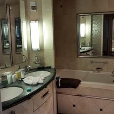Bathroom Sink/Tub