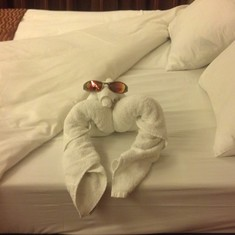 Towel animals every night, King size bed