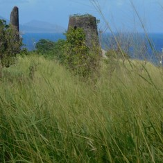 Basseterre, St. Kitts - The remains of a sugar mill