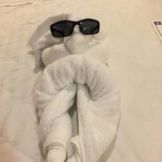 Doggy towel artistary