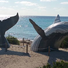 Grand Turk Island - Love the whale sculpture in Grand Turk.